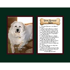 McDarlins Calligraphy Dog Rules Great Pyrenees Wall Decor Pet Dog Saying Gift 24