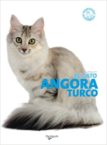 El gato angora turco (Spanish Edition): Mariolina Cappelletti: 9788431541613: Amazon.com: Books