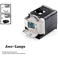 AWO BL-FU310A / FX.PM484-2401 Premium Quality Projector Replacement Lamp with Housing Fit For OPTOMA X501 W501 EH501 EW420 HD151X HD36