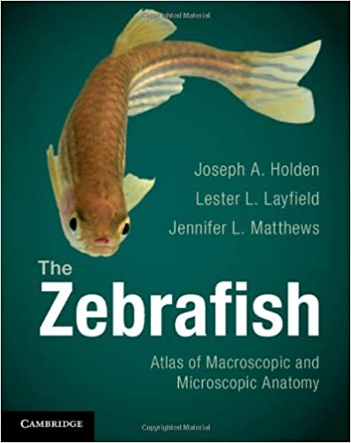 The Zebrafish: Atlas of Macroscopic and Microscopic Anatomy: Joseph ...