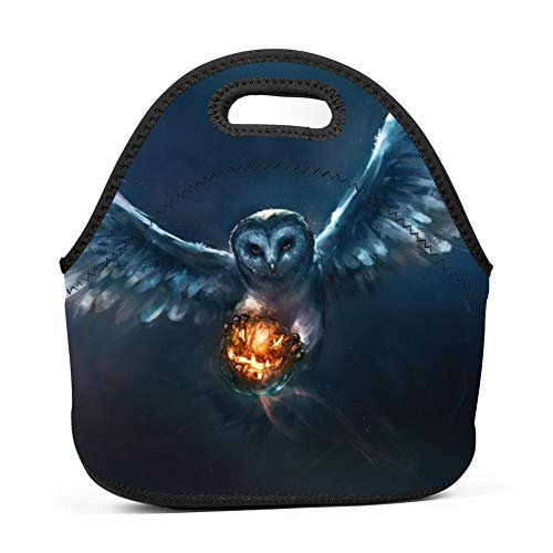 Brniogn Waterproof Lunch Box Carry Case Halloween Creative Owl with Pumpkin Lunch Bag for Adult Women and Men - Idea for Beach,Picnics,Road Trip,Meal Prep,Everyday Lunch to Work or School for $<!--$14.00-->