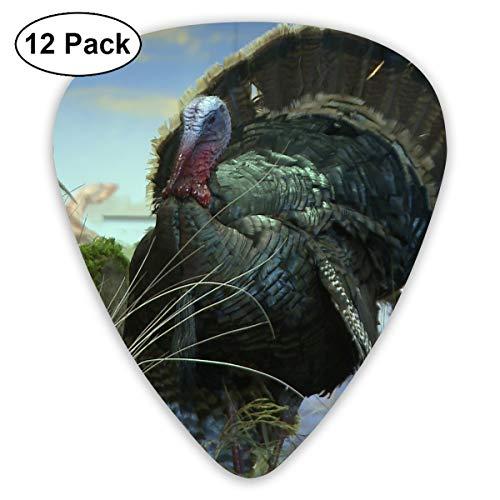 351 Shape Classic Guitar Picks Turkey Picture Plectrums Instrument Standard Bass 12 Pack