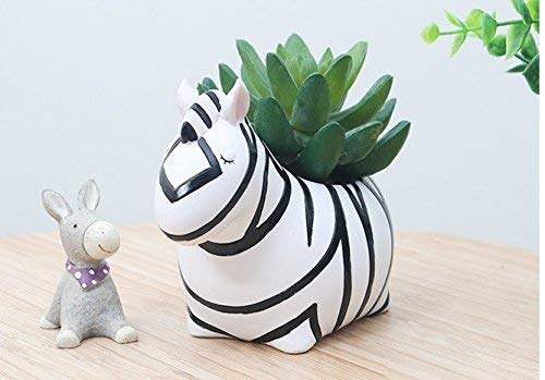 Zebra Flower Pot