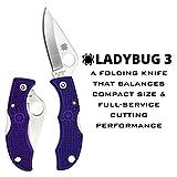 Spyderco Ladybug 3 Signature Folding Knife with