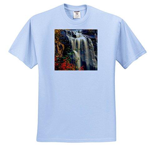 3dRose Danita Delimont - Waterfalls - USA, West Virginia, Blackwater Falls State Park. Waterfall In Autumn. - T-Shirts - Adult Light-Blue-T-Shirt Large (TS_279795_52)