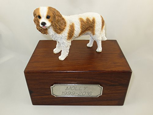 Beautiful Paulownia Small Wooden Urn with Brown & White Cavalier King Charles Spaniel Figurine & Personalized Pewter Engraving