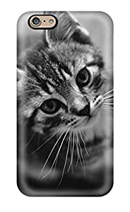 Forever Collectibles Cat Hard Snap-on Iphone 6 Case