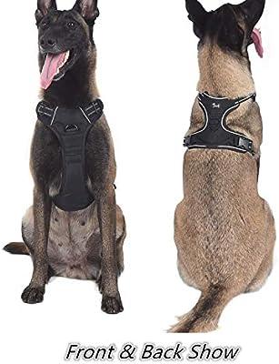 Louvra Arnés del Perro Antitirones Básicos Adjustable de Nylon ...