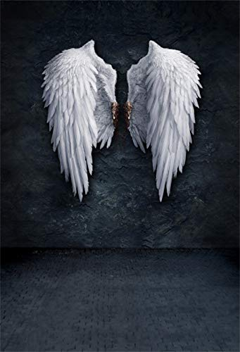 (Yeele 5x7ft Wings Vinyl Photography Background Grunge Wall Fashion Youngster Kid Girl Boy White Wings Dreamy Holy Pure Sprawling Bird Pinion Photo Backdrops Pictures Studio Props Wallpaper)