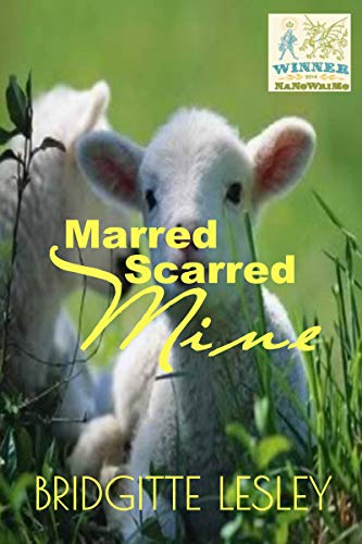 Marred Scarred Mine by [Lesley, Bridgitte]
