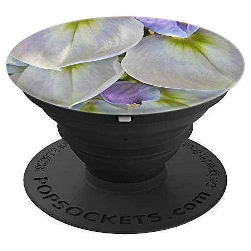 Lilac and White Wisteria Garden Blossom - PopSockets Grip and Stand for Phones and Tablets ()