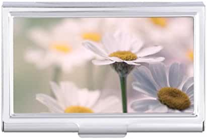 White Daisy Flower Floral Daisies Flowers Outdoors Card Holder