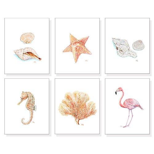 Beach Coastal and Tropical Art Prints Set of 6, Sea and Ocean Life Wall Decor, Sand and Pink Watercolors, Seashells Seahorse Starfish Coral Flamingo