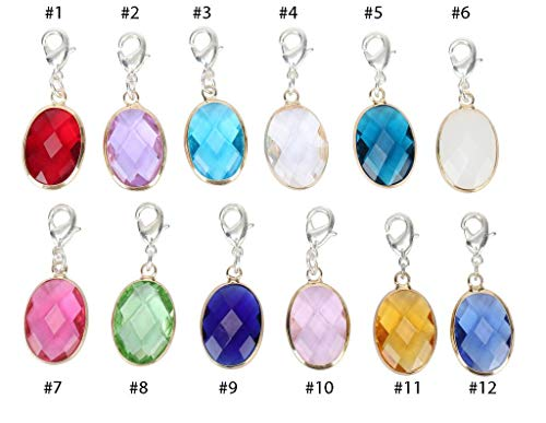 Birthstone Austrian Crystal Rings - 2pcs Clip On Charms January Birthstone Charms Austrian Crystal Beads for Earrings Bracelet Necklace Keychain Jewelry Making CCP6-01-L