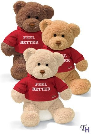 Feel Better Hug Bear - Gund Hugs Feel Better Bear Single