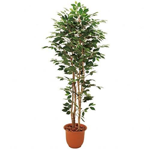 人工観葉植物 ベンジャミン3本立1.8m 高さ180cm sk1098 (代引き不可) インテリアグリーン 造花 B07SSFLJ95