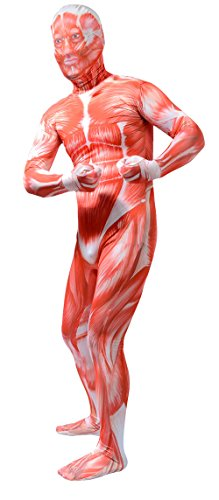 ATHX Adults Full Body Muscle Anatomy muscle bodysuit Costume (Adults Small, Muscle)