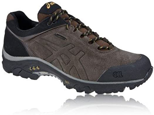ASICS Gel-Arata Gore-Tex Agua Proof Trail Zapatilla De Trekking: Amazon.es: Zapatos y complementos