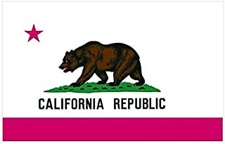 product image for Nylon California State Flag - 4'H x 6'W