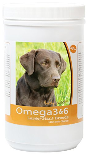 Healthy Breeds Dog Omega 3 & 6 Fish Oil Soft Chews for Labrador Retriever - Large Dog Formula - Over 40 Breeds -Supplement with Anchovy, Krill Oil - 120 Count - HP Skin and Coat Support