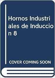 Hornos industriales de induccion: Amazon.es: Astigarraga