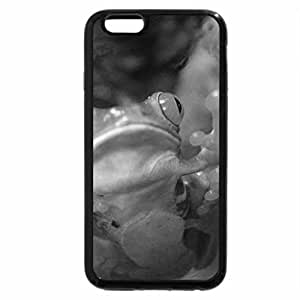 iPhone 6S Plus Case, iPhone 6 Plus Case (Black & White) - Red Eye Tree Frog