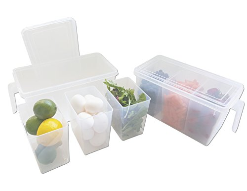 Refrigerator Organizer Container - Clear with Lid, Handle and 3 Smaller Bins - 2 - Vegetable Server Divided