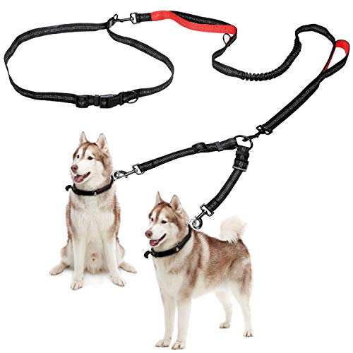 Cynttengo Double Dog Leash Retractable Dog Leash with Coupler for One or Two Dogs Hands Free Waist Belt Leash or One-handely Dual Bungees with Padded Handles Medium to Large 150lbs Dogs