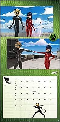 Miraculous Broschur Kalender 2020: Amazon.es: Heye: Libros ...