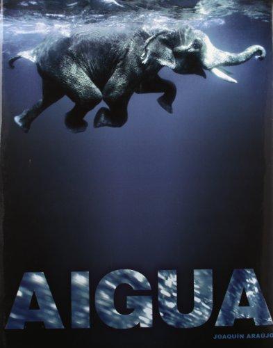 Descargar Libro Aigua Joaquín Araújo