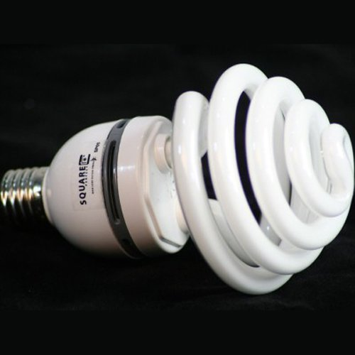 9055 30 Watt Compact Fluorescent Full Spectrum Photo Bulb / SAD Light Studio Bulbs ()