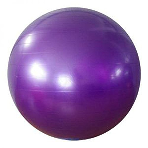 One Fit Exercise Ball Thick Yoga ball Fitness Ball with Pump 2000lbs Exercise Stability Ball, Anti-Burst & Slip Resistant,Professional Quality Design(55cm balance ball)[1 Year Warranty] (55cm,purple)]