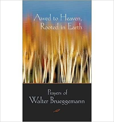 [ { AWED TO HEAVEN, ROOTED IN EARTH: THE PRAYERS OF WALTER BRUEGGEMANN } ] by Brueggemann, Walter (AUTHOR) Dec-30-2002 [ ]