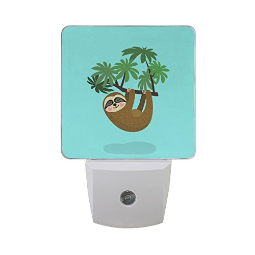 - Naanle Set of 2 Sloth Hanging On Tree Branch Cute Cartoon Character Wild Jungle Animal Baby Flat Design On Blue Auto Sensor LED Dusk to Dawn Night Light Plug in Indoor for Adults