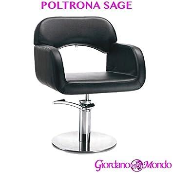 Fauteuil De Salon Coiffeur Et Barbier Chaise Hair Sage Professionnelle