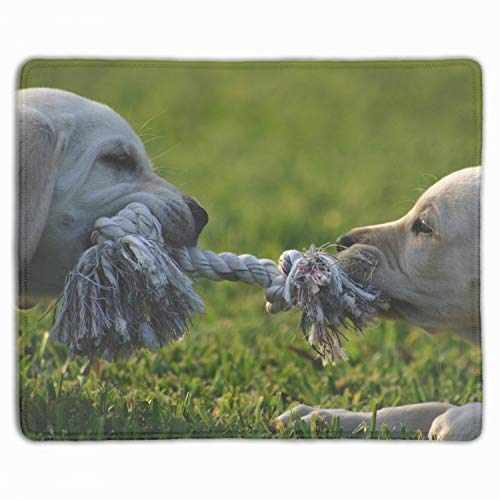 (Personalized Rectangle Mouse Pad, Printed Dogs Rope Playing Puppies Profile Grass,Non-Slip Comfortable Computer Mouse Pad)