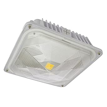 LEDwholesalers 35-Watt Outdoor LED Canopy Ceiling Light Fixture 100-240/277VAC  sc 1 st  Amazon.com & LEDwholesalers 35-Watt Outdoor LED Canopy Ceiling Light Fixture ...