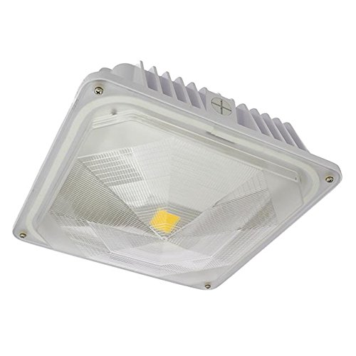 LEDwholesalers 35-Watt Outdoor LED Canopy Ceiling Light Fixture 100-240/277VAC, UL-Listed, Warm White 3000K, 3921WW