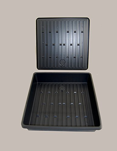Wheatgrass Growing Tray - 10 1/2'' x10 1/12''x 2 1/4'' Perfect Plant Seed Trays - NO Drain Holes - 100 pack by Grower's Solution