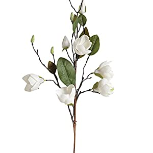 Alelife New Artificial Fake Silk Flower Leaf Magnolia Floral Wedding Bouquet Party Centerpieces Bridal Party Home Room Decor (White) 1