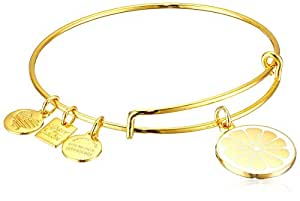Alex and Ani Women's Charity by Design Zest for Life II Charm Bangle Shiny Gold Finish One Size