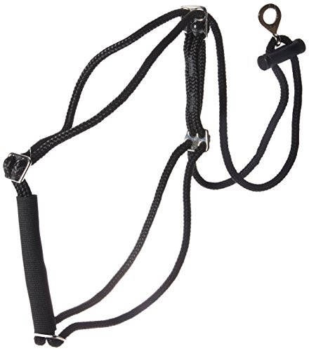 Coastal Pet Products DCP603320MD Nylon Walk Right Control Dog Harness, Medium, -