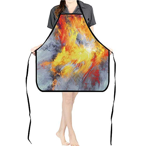 (Jiahong Pan Men and Women Kitchen Apron Bright splaashes Paint Color Texture Multicolor for Cooking, Baking, Crafting, Gardening,)