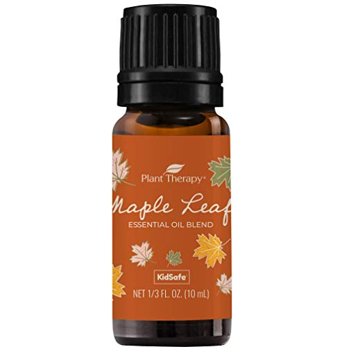 Plant Therapy Maple Leaf Fall Blend Essential Oil 10 mL (1/3 oz) 100% Pure, Undiluted, Therapeutic Grade (Plant Therapy Synergy Blends)