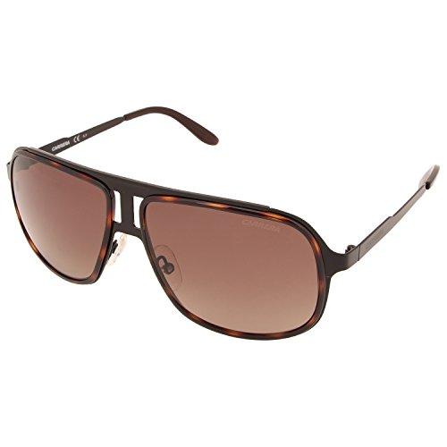Blckhvn CARRERA 101 Brown Black Negro S Carrera Sonnenbrille Sf 5Xgx1qqO