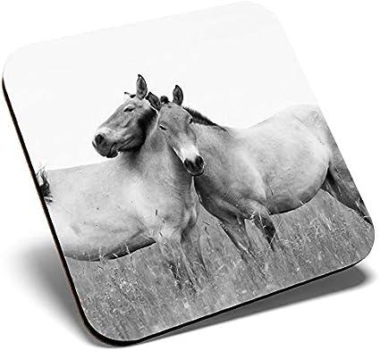 Gran posavasos cuadrado BW – caballos de Przewalski | Posavasos de calidad brillante | protección de mesa para cualquier tipo de mesa #39381