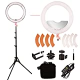 GSKAIWEN LED 18'' Stepless Adjustable Ring Light Make Up Beauty Light photography Camera Photo/Video with Stand and Miror…