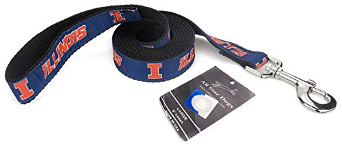 All Star Dogs 1 Inch Illinois Fighting Illini Ribbon Dog Leash - 6 Foot