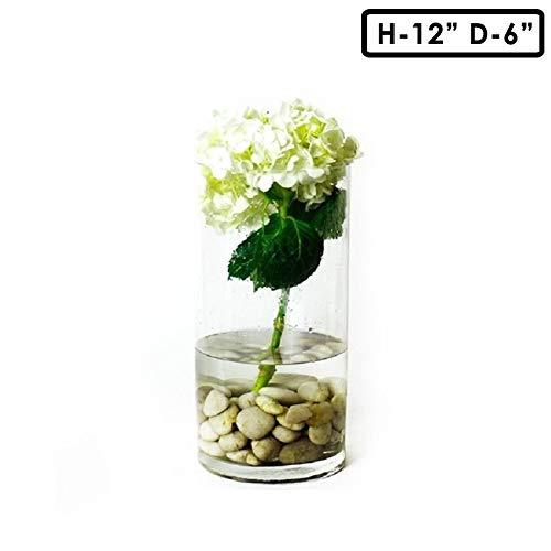 Glass Cylinder Bowls - CYS EXCEL Pack of 4-Glass Cylinder Vase with Different Size Decorative Centerpiece for Home or Wedding Wide:6