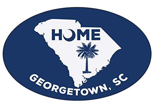 (Georgetown South Carolina State Shape Map Summer Trendy Souvenir Oval Magnet)